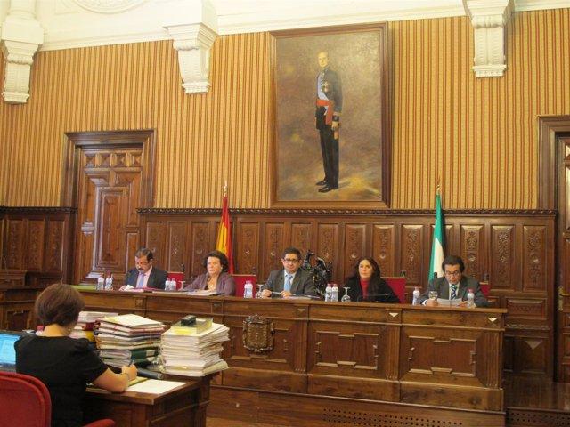 Pleno De La Diputación Adonde Se Han Aprobado Los Presupuestos Para 2012