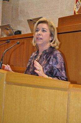 La Consejera De Educación, Universidad, Cultura Y Deporte De DGA, Dolores Serrat