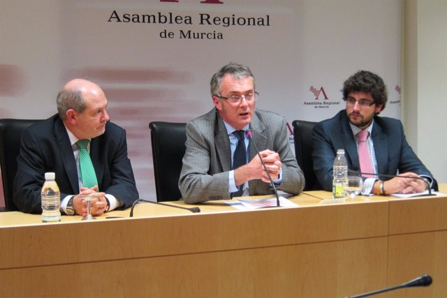 El Diputado Del Grupo Parlamentario Popular, Domingo Segado