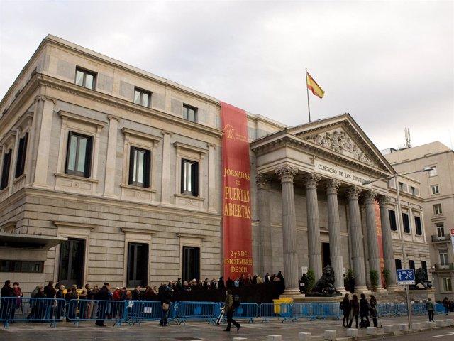 Cola En Las Jornadas De Puertas Abiertas Del Congreso (2011)