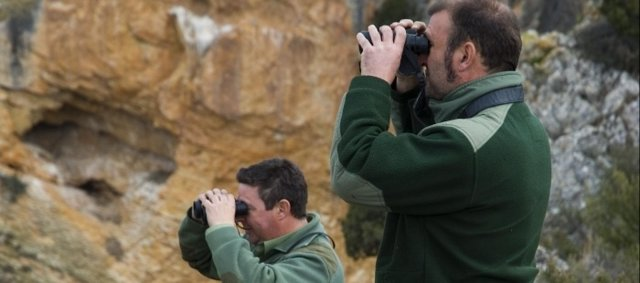Agentes Observando La Cabra Montés