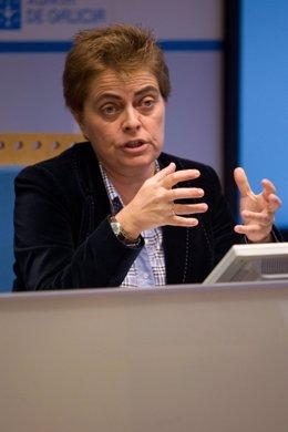 La Directora Xeral Ana María Díaz En Rueda De Prensa.