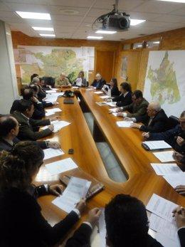La Comisión De Diseño Urbano Del Ayuntamiento De Murcia