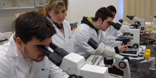 Alumnos De Biología De IE University