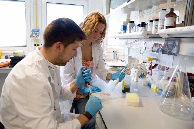 Investigadores En Un Laboratorio De La Universidad De Jaén