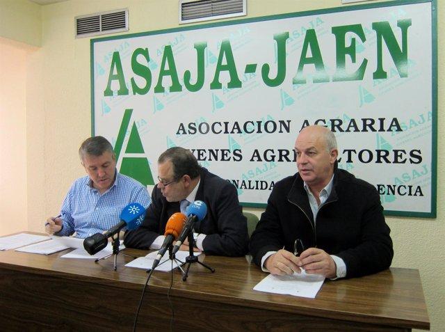 Cristóbal Gallego, Francisco Molina Y Luis Carlos Valero En Rueda De Prensa.