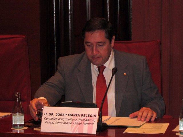 Josep Maria Pelegrí