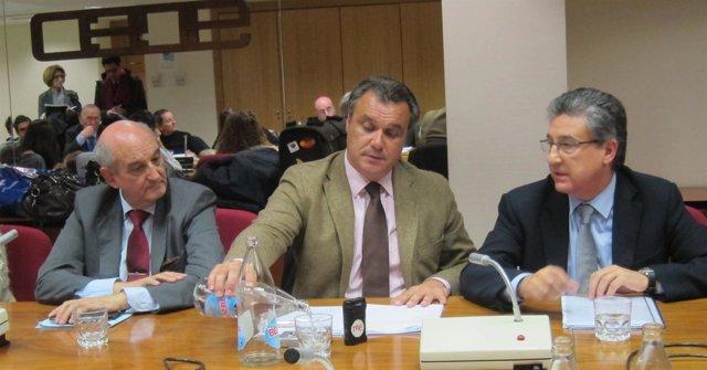 Rafael Gallego, Presidente De Ceavyt