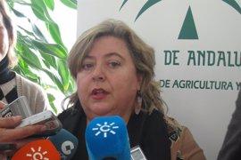 """La Junta no trabajará en otra hipótesis que no sea """"mantener o renovar"""" el acuerdo de pesca entre UE y Marruecos"""
