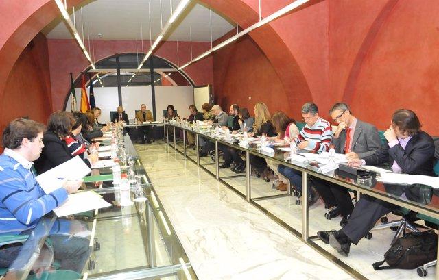 Pleno Del Consejo Andaluz De Enseñanzas Artísticas
