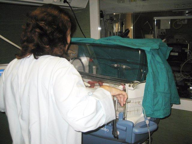 Una Médico Atiende A Un Bebé En Una Incubadora
