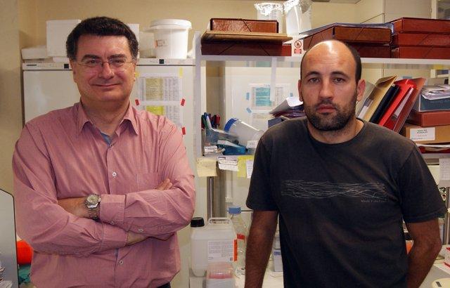 Rafael Simó Y David M. Selva, Investigadores De Vall D'hebron