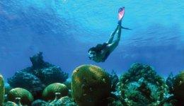 Riviera Maya Y Playa De Carmen, Los Destinos Más Buscados En Google