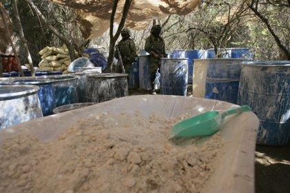 El Ejército descubre dos 'narcolaboratorios' en un municipio de Jalisco