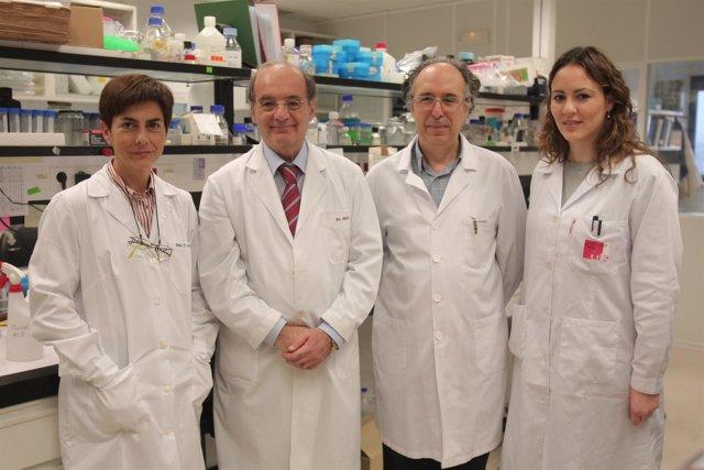 Proteína Podría Reducir La Necesidad De Trasplante En Pacientes Con Hepatitis Fu