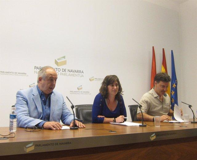 Fernando Ibilcieta, Garazi Urrestarazu Y Bikendi Barea (Bildu).