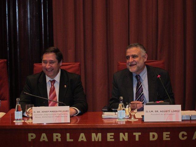 El Conseller Josep Maria Pelegrí, En El Parlament