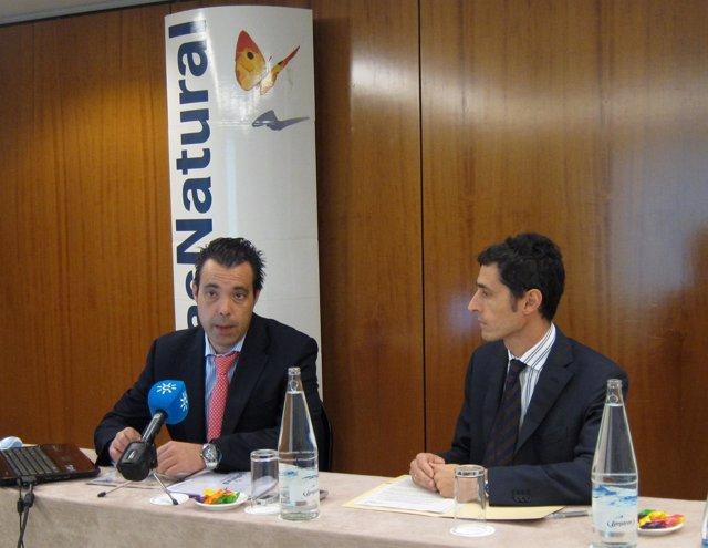 Balance Gas Natural Andalucía