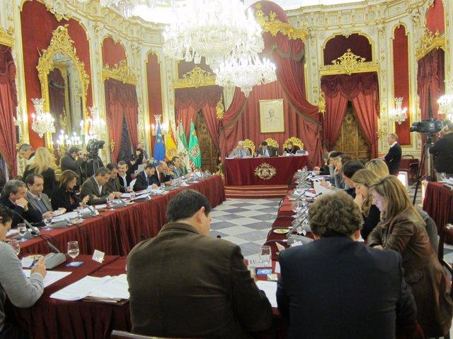 Pleno De La Diputación De Cádiz
