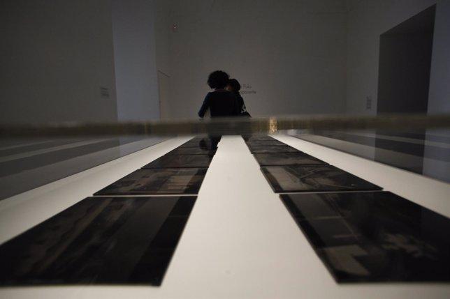 Exposición De Paloma Polo