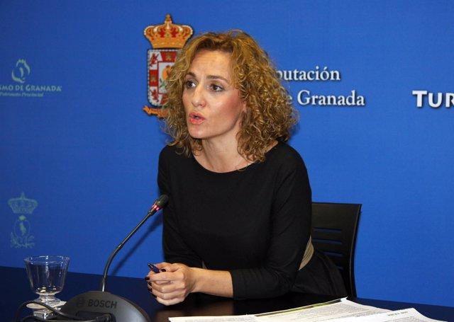 Diputada Provincial De Turismo,