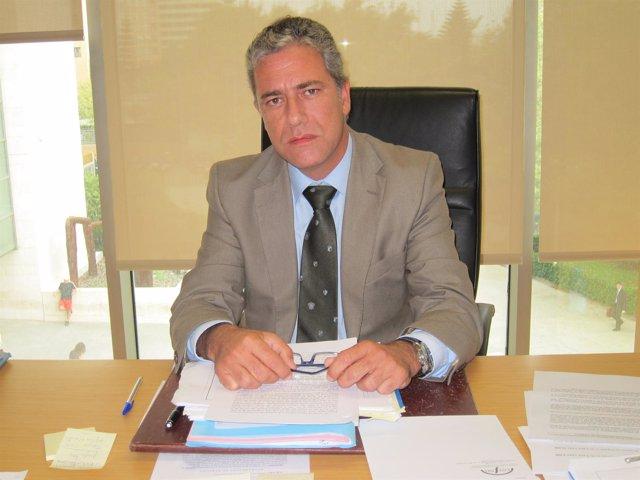 El Juez Decano De Valencia, Pedro Viguer