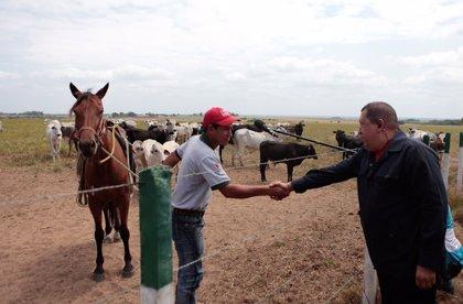 Chávez nacionalizará los bancos, incluido el BBVA, si no otorgan créditos al sector agrícola