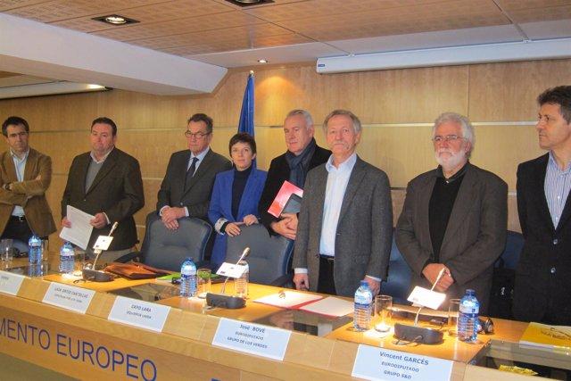 José Bové, Europarlamentario (Verdes)