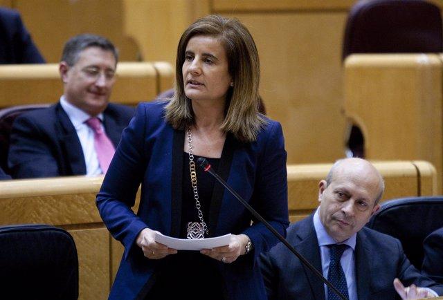 La Ministra De Trabajo, Fátima Báñez, En El Senado