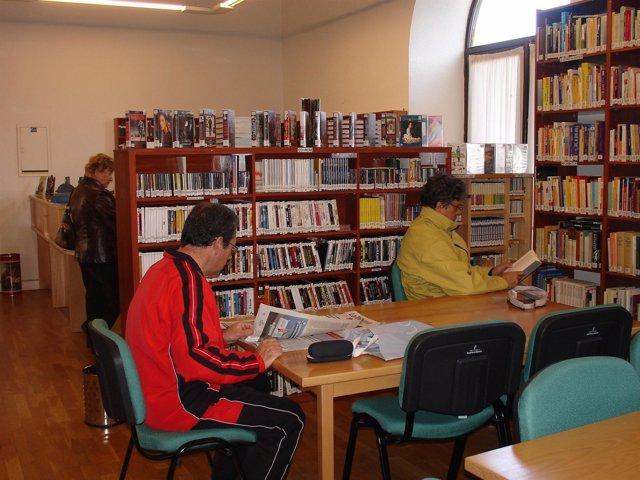 Biblioteca, Lector, Libros