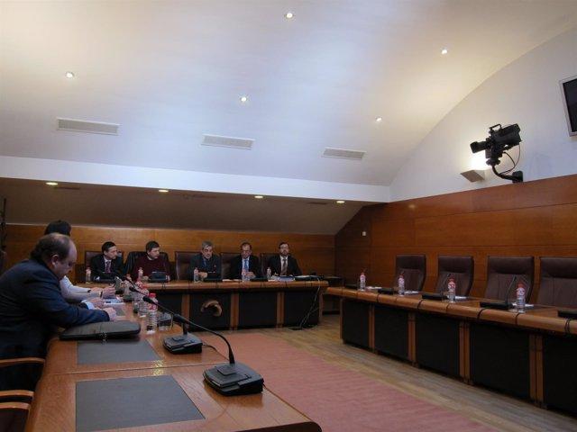 La Comisión De GFB Sin La Oposición