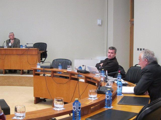 Foto Comisión Economía Ricardo Capilla