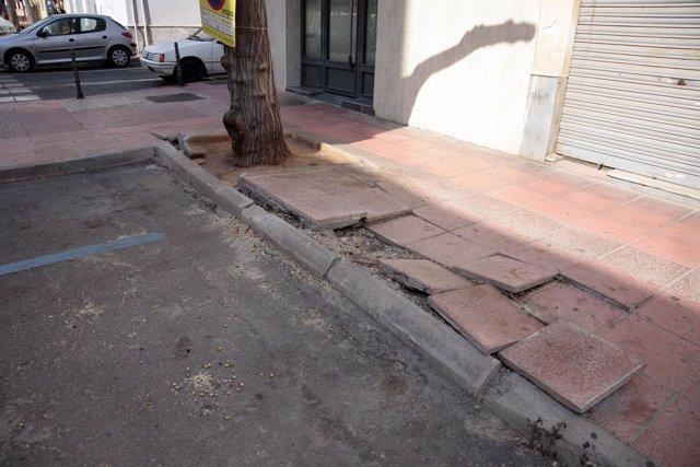 Árbol Daña Una Acera En La Calle Azorín