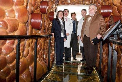Andalucía.- Sevilla acoge una exposición interactiva sobre la diabetes con la recreación de un páncreas gigante