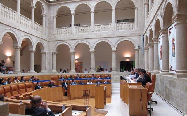 Pleno Parlamento De La Rioja