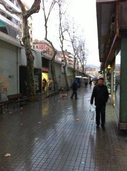 Temporal De Nieve, Lluvia Y Frío En Barcelona