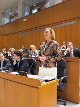 La Presidenta Luisa Fernanda Rudi