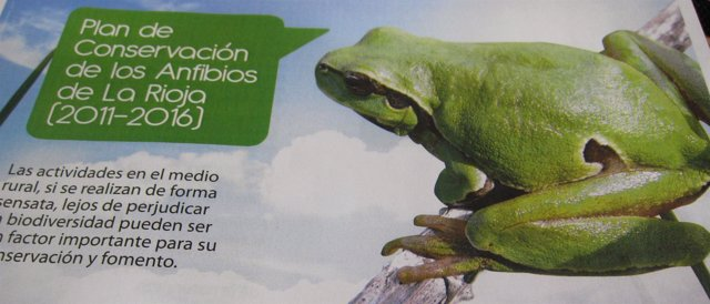 Plan De Conservación De Anfibios (Ranas)