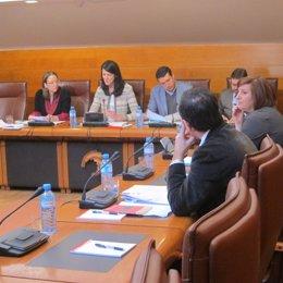 Leticia Díaz En La Comisión De Presidencia