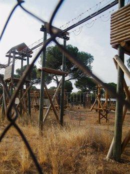 Estado Actual Del Parque De Aventuras Los Talleres Del Pinar