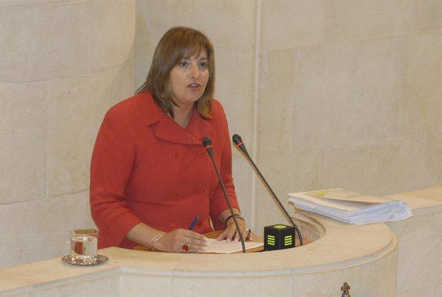 María Rosa Valdés Huidobro