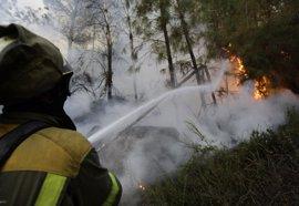 Medios aéreos y terrestres controlan un incendio forestal declarado en Viana do Bolo (Ourense)