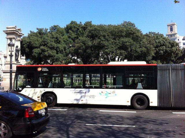 Autobús De TMB