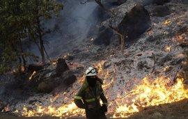 Detenidas seis personas por delitos relacionados con incendios forestales en distintas localidades gallegas