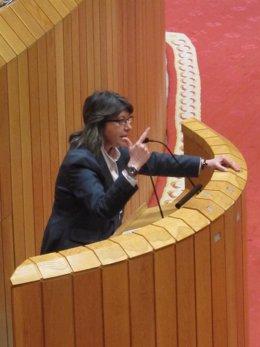 """Quintana Niega """"Barra Libre"""" Con El Plan Acuícola"""