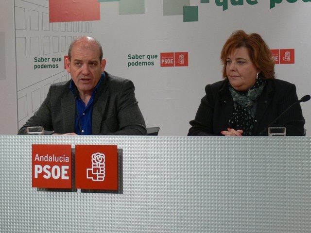 2 NP. PSOE Diputación Dependencia, Fondo De Gaviotas 20120229