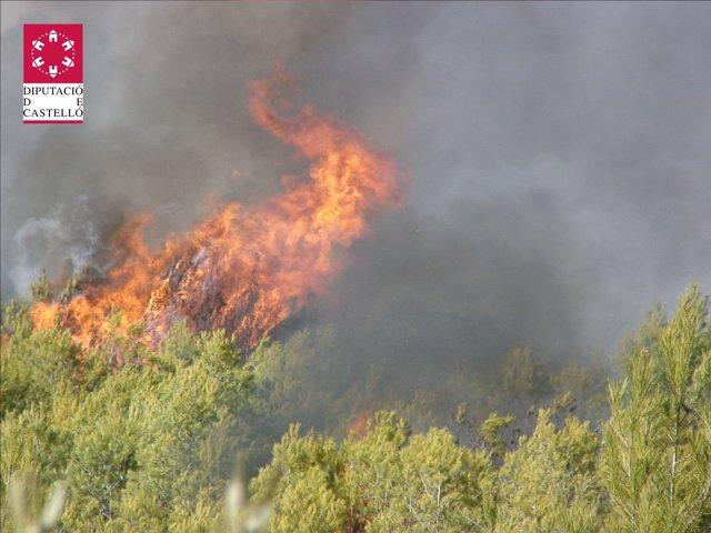 Incendio En La Sierra De Espadán