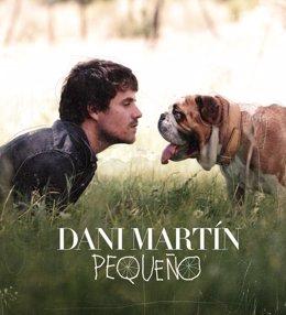 El Cantante Dani Martín