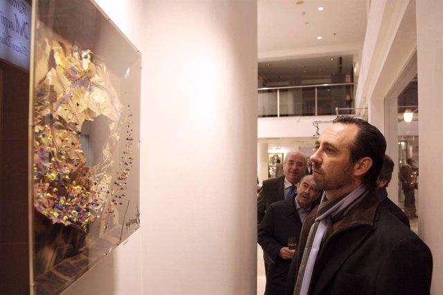 José Ramón Bauzá Visitando Una Galería