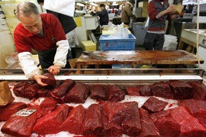 El consumo de carne roja puede elevar la mortalidad cardiovascular y por cáncer
